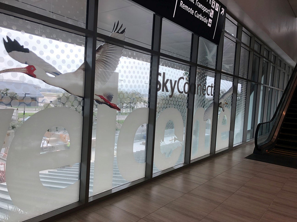 Tampa Airport Window Graphic by Trinity with Mactac
