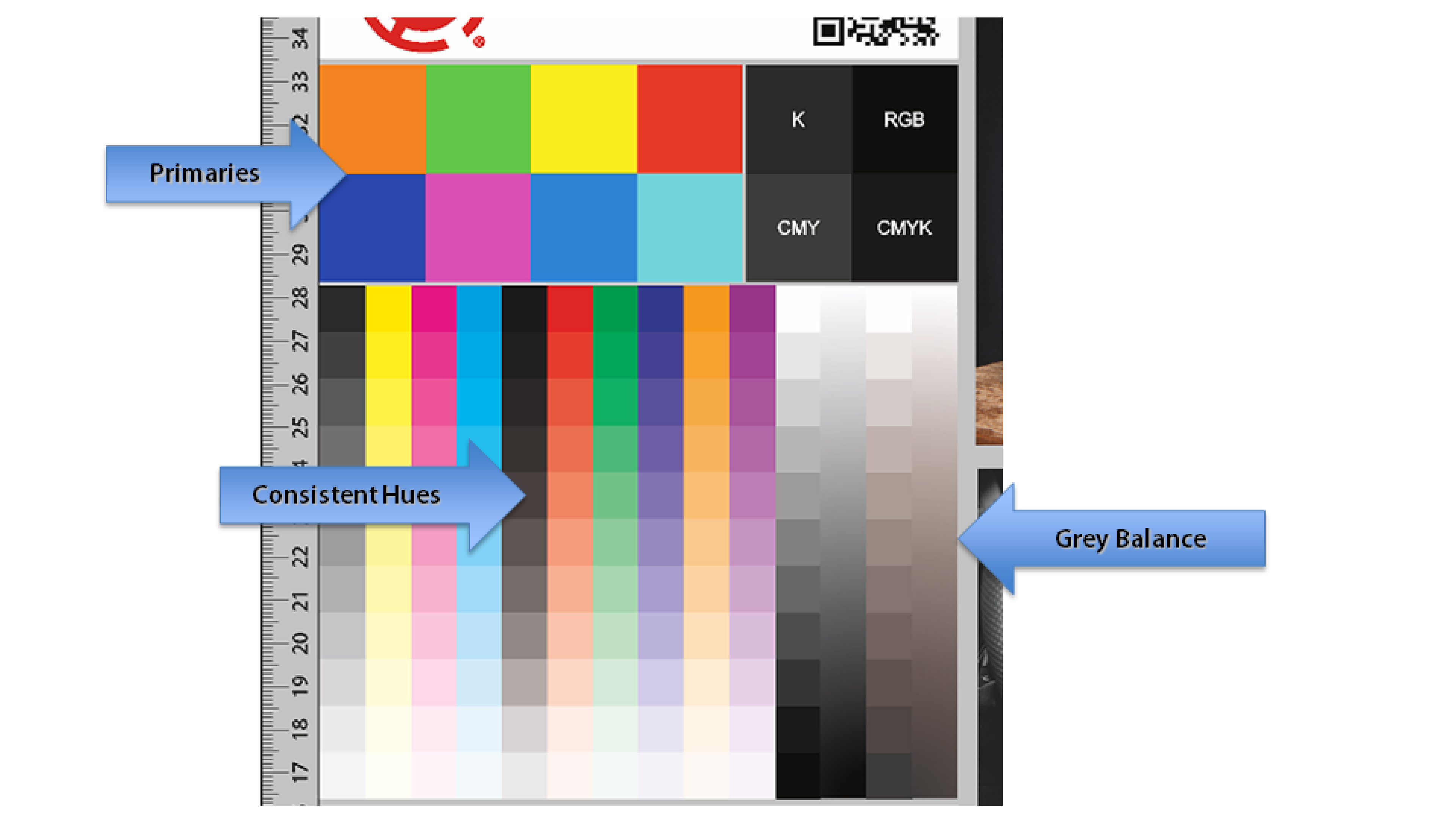 SAi Flexi - Color Management - What to look for in sample file.