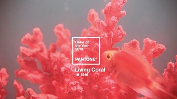 Pantone COTY 2018