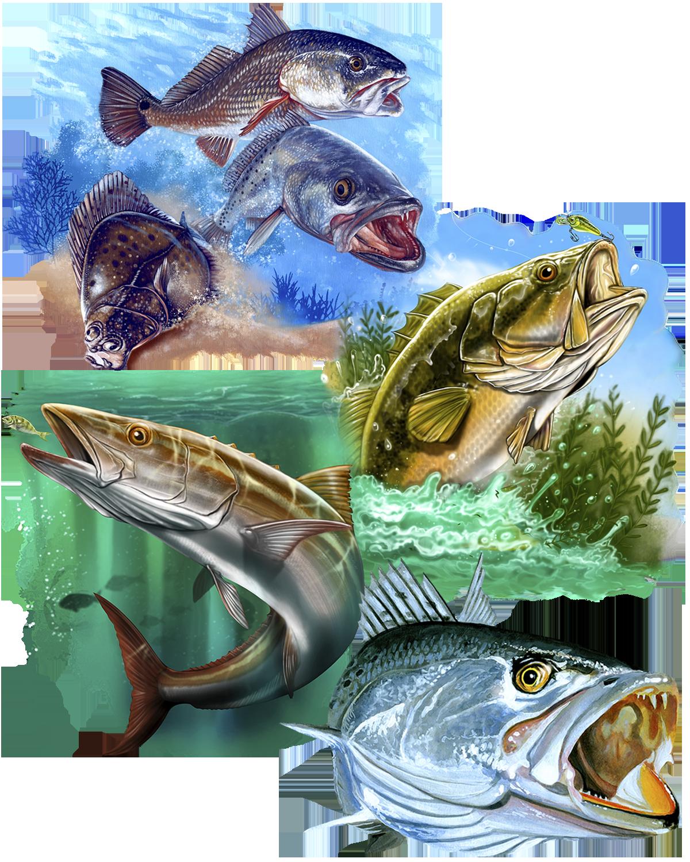 Great Dane Graphics Fishing Collage 2019