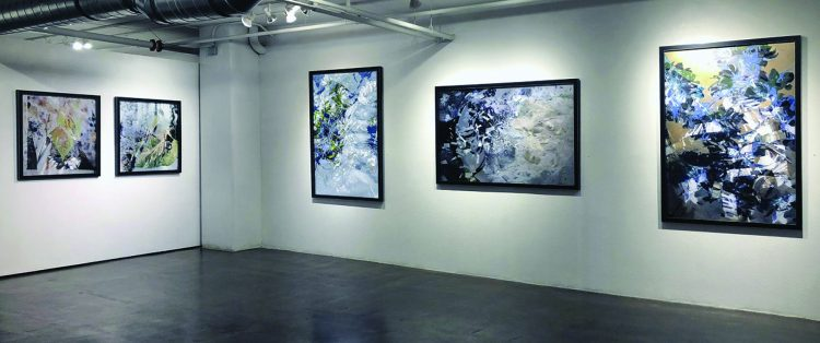 Lhotka Gallery
