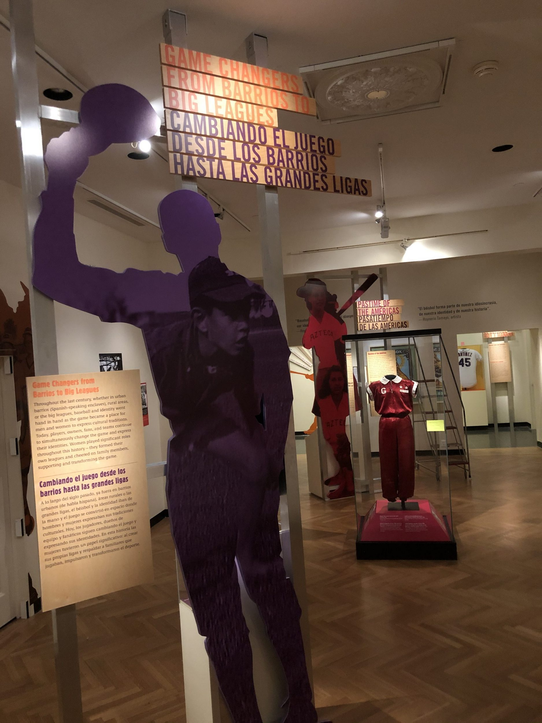 Mounted signage, wall murals, and dimensional cutouts are all part of museum graphics.